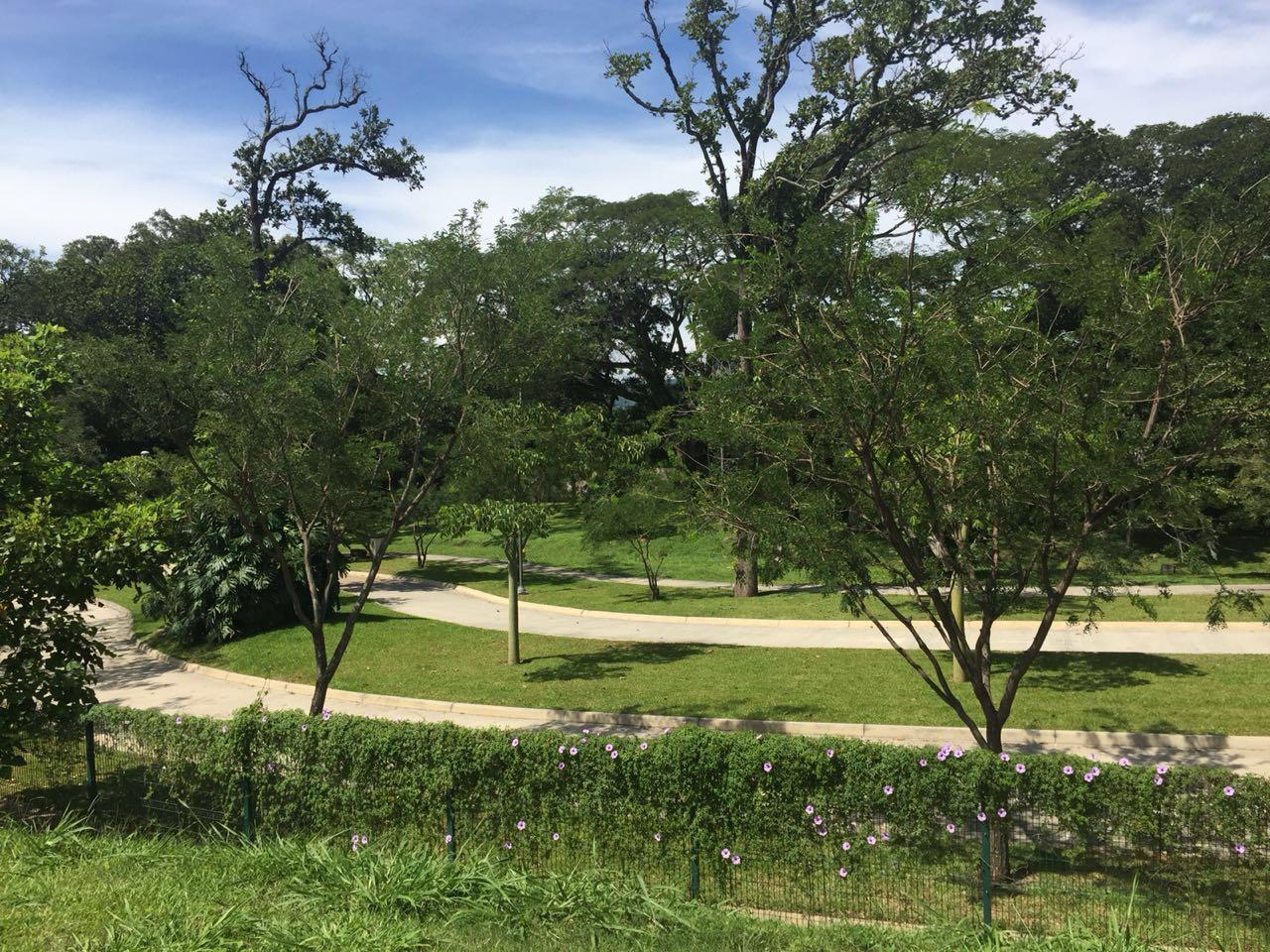 Terreno en Hacienda Espinal